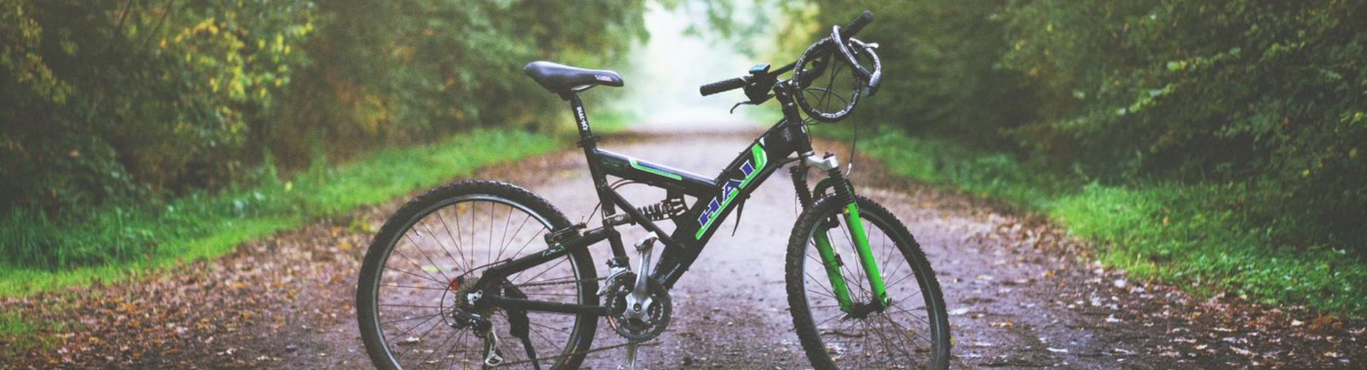 After a hard day at work, take a break: with the mountain bikes of BW Air Hotel Linate, you can immerse yourself in the green area of Idroscalo, in contact with nature!